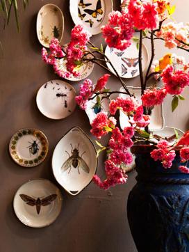 jasmijn bloembinders